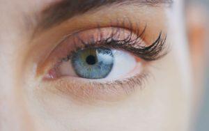 Augenbrauen und Wimpern